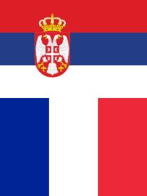 Serbie-France en finale de la Coupe Davis 2010