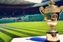 Wimbledon-Cup